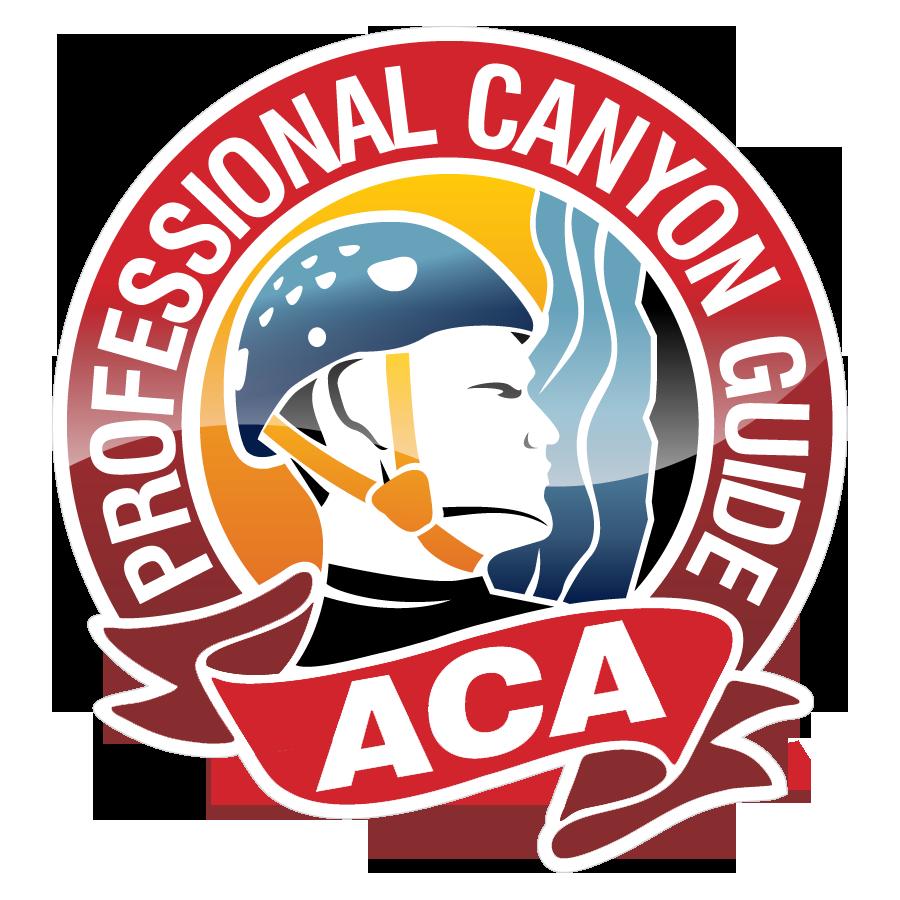 Hire An Aca Certified Professional Guide Aca